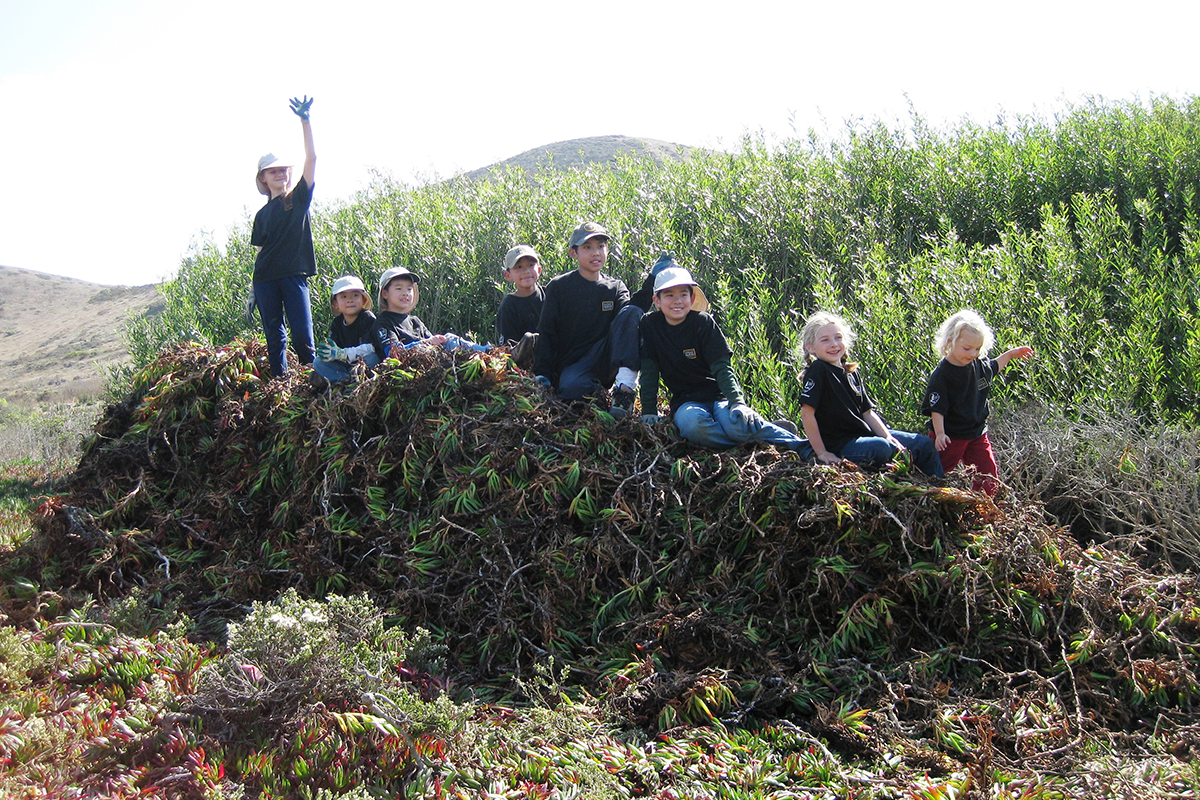 oung volunteers on top of a pile of invasive ice plant pulled from Mori Point