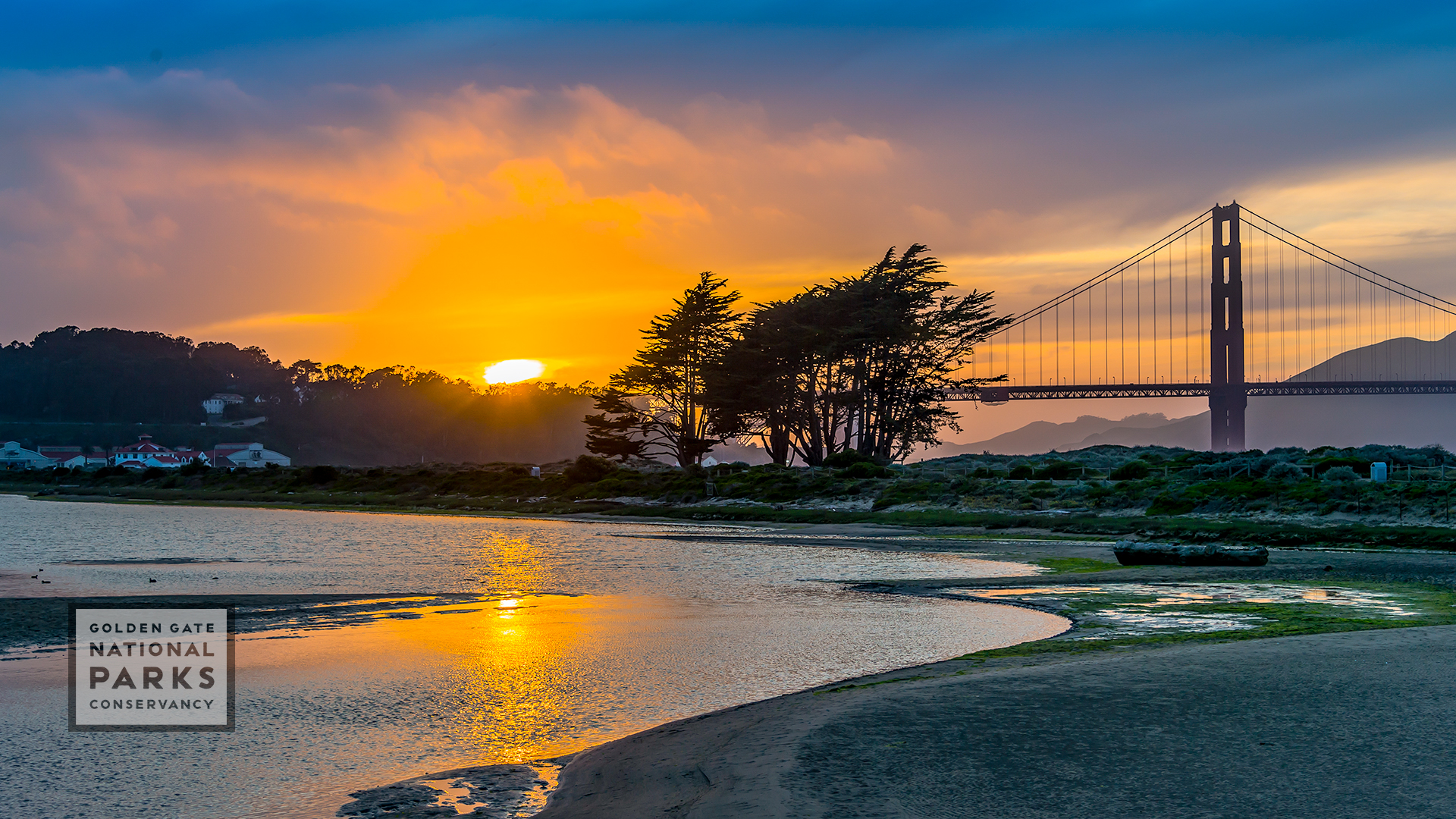 Free Zoom Backgrounds To Take Your Meetings To The Parks Golden Gate National Parks Conservancy