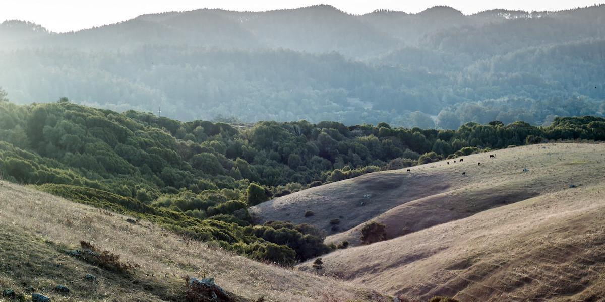 Sunset at Bolinas Ridge