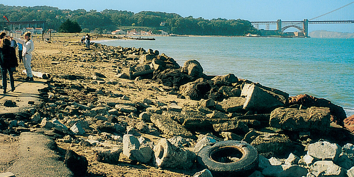 Crissy Field shoreline in 1997, before restoration
