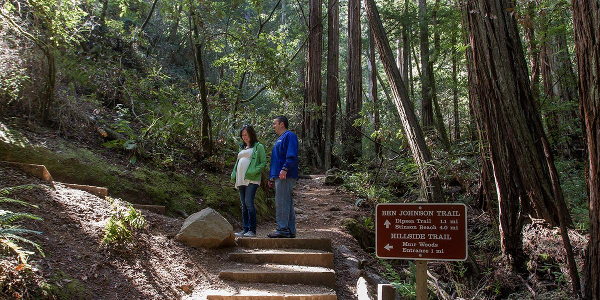 Ben Johnson Trail, Muir Woods