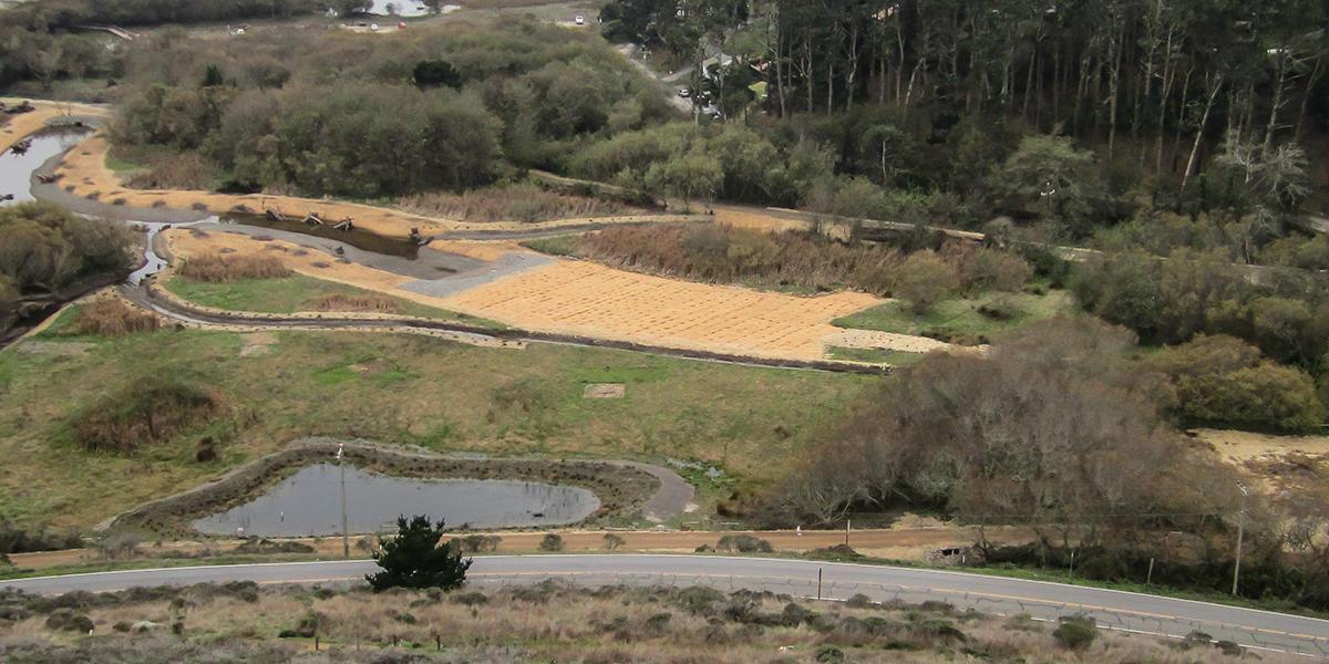 Jute fabric stabilizes soil