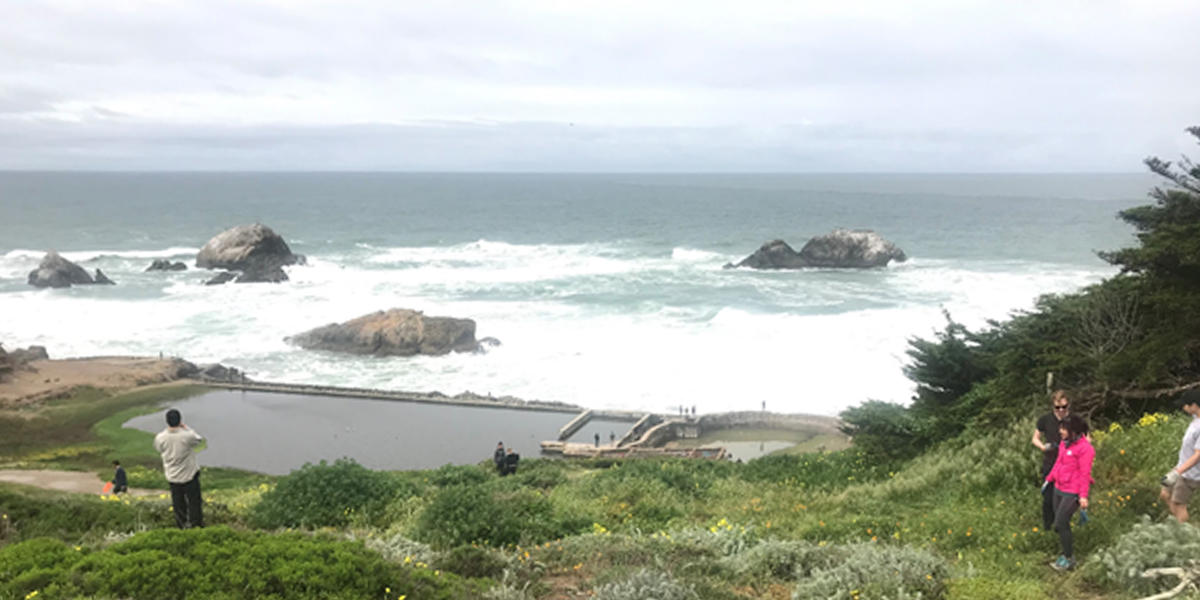 a hill of grass and flowers leads the ruins of Sutro Baths at Lands End overlooking the Pacific Ocean
