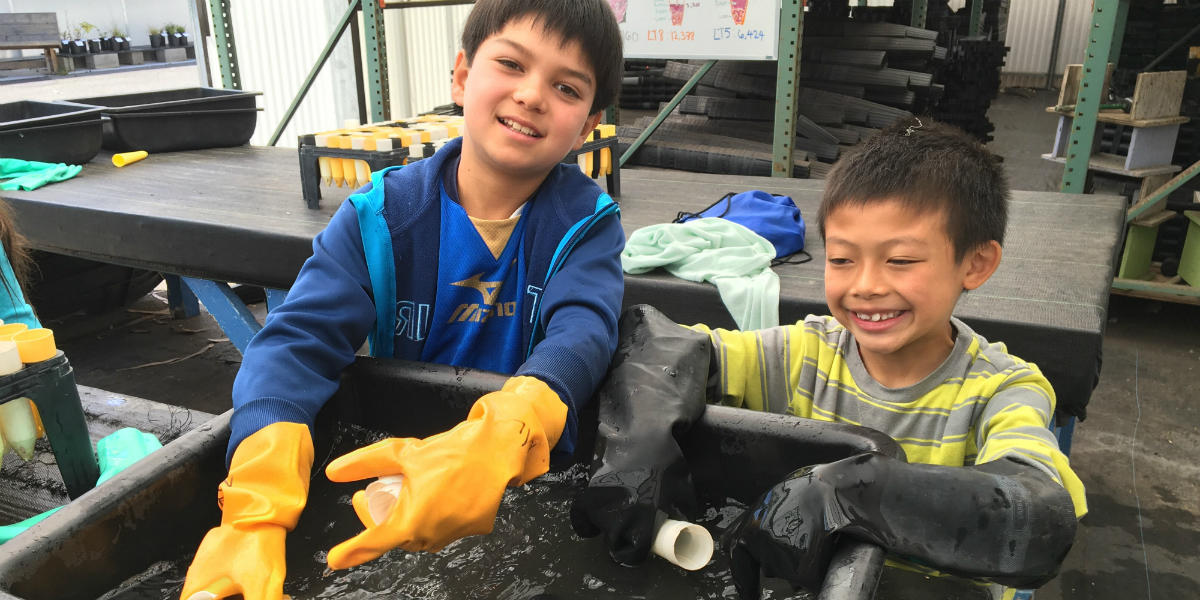 Young people help wash pots
