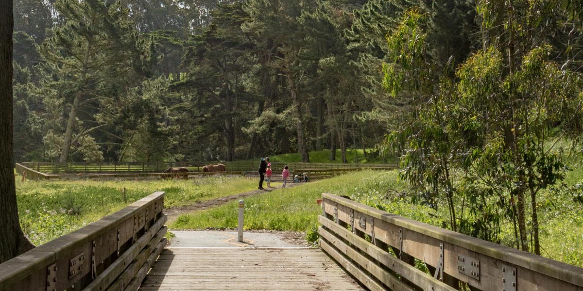 Presidio Promenade Trail