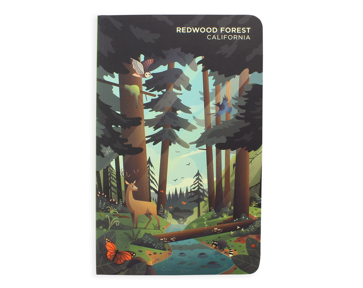 Redwood forest journal.