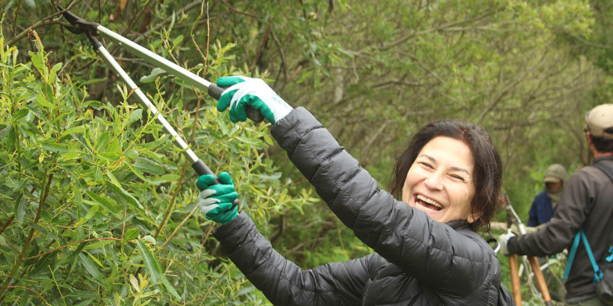 A volunteer uses plant shears to trim a bush along a trail