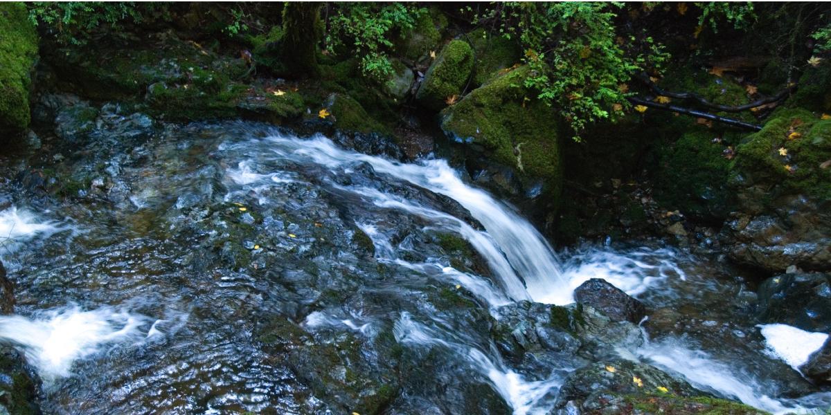 Waterfall along the Cataract Falls Trail