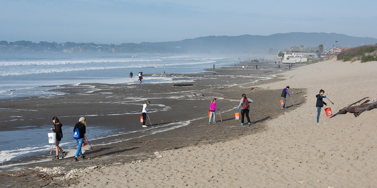 MLK Day of Service at Stinson beach