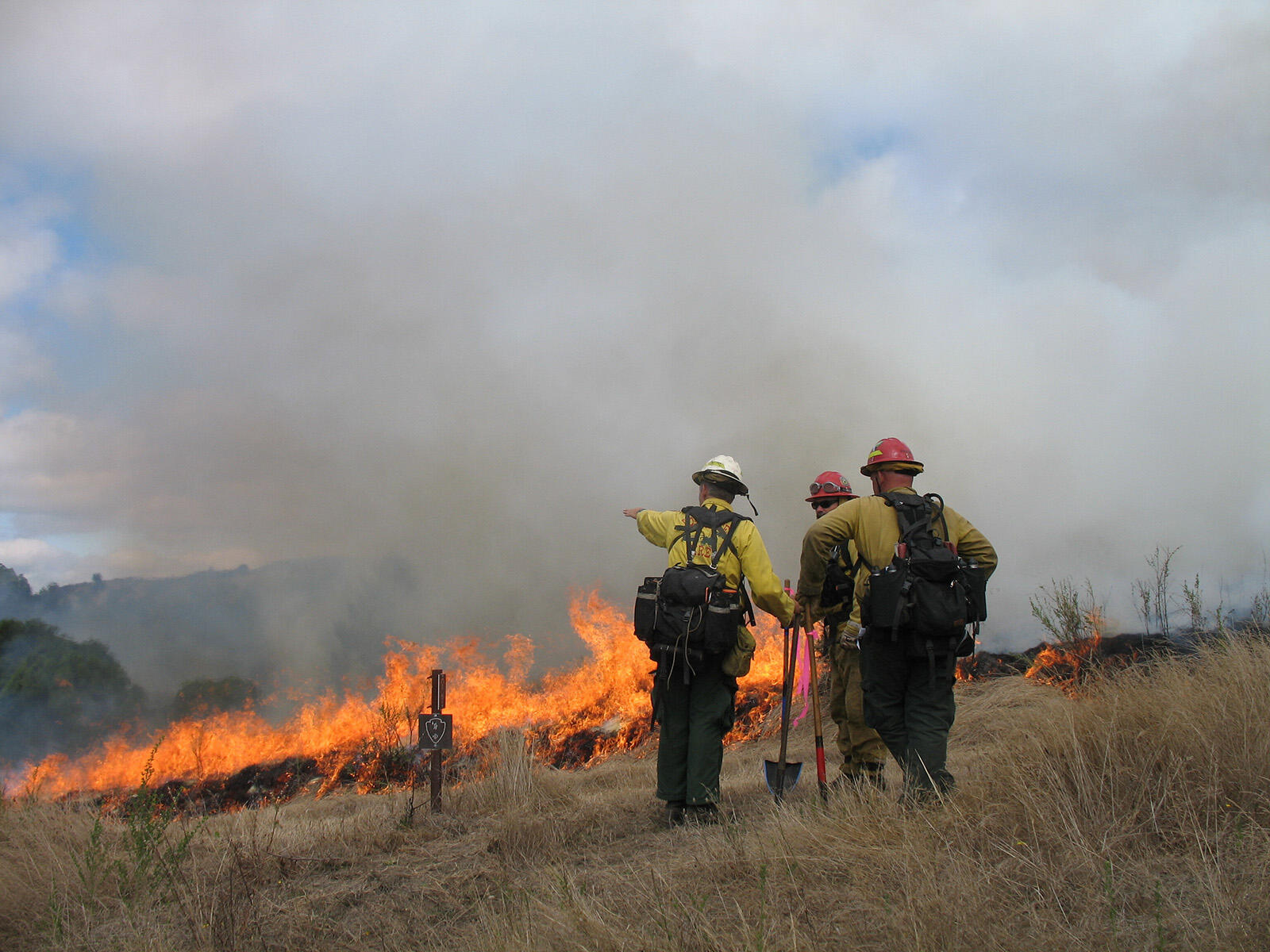 Uniformed firefighters gesture to each other as a prescribed fire burns on the grassy landscape.