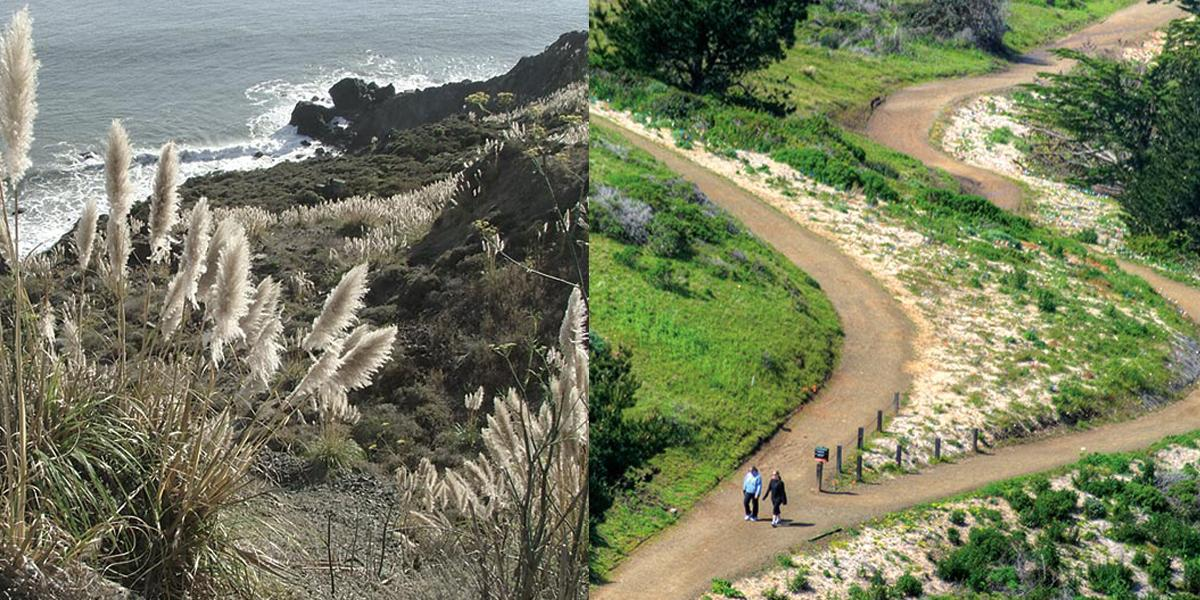 Mori Point before and after restoration