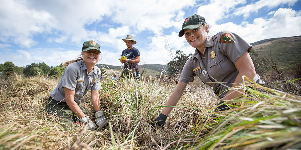 National Park Rangers at Work in Tennessee Valley