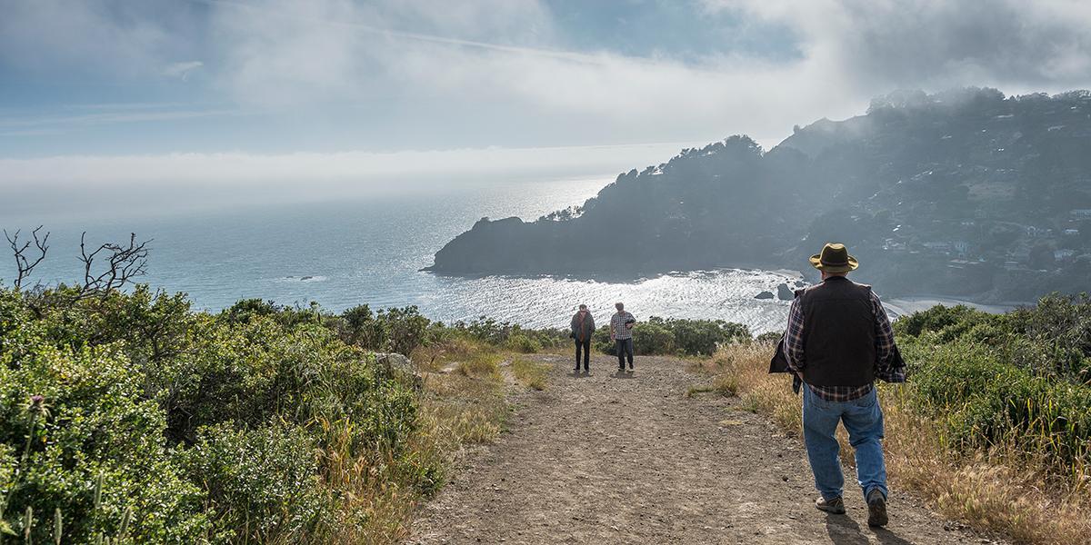 Coastal Trail At Muir Beach