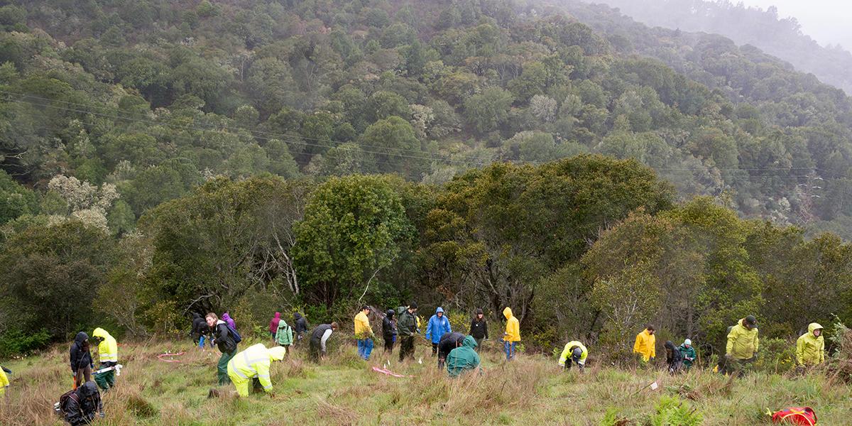 Volunteers at Oakwood Valley