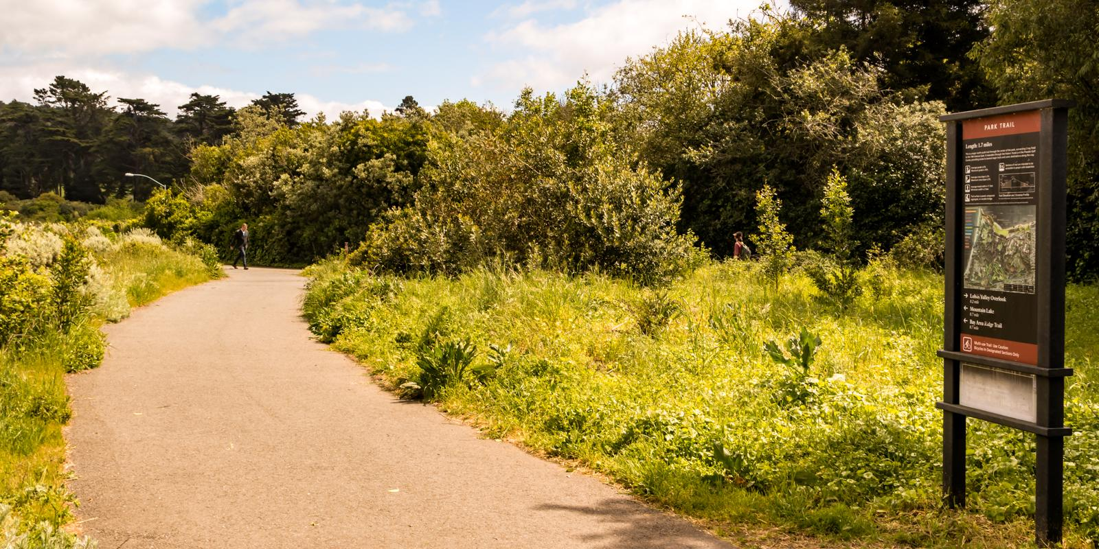 The Presidio Park Trail provides an important link in between the Presidio Promenade and the Bay Area Ridge Trail