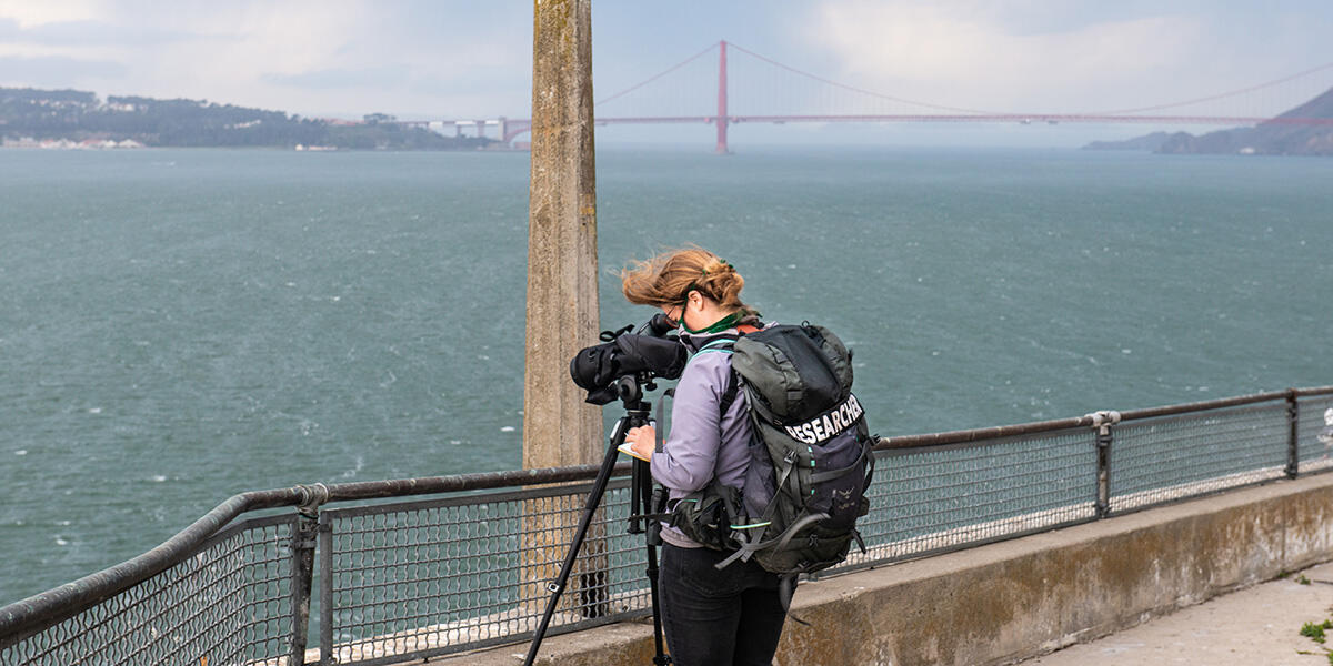 A bird researcher on Alcatraz Island.