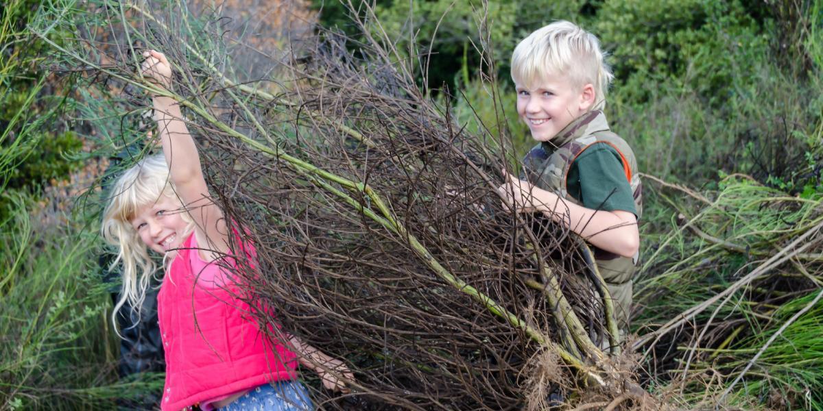 Teamwork among young volunteers