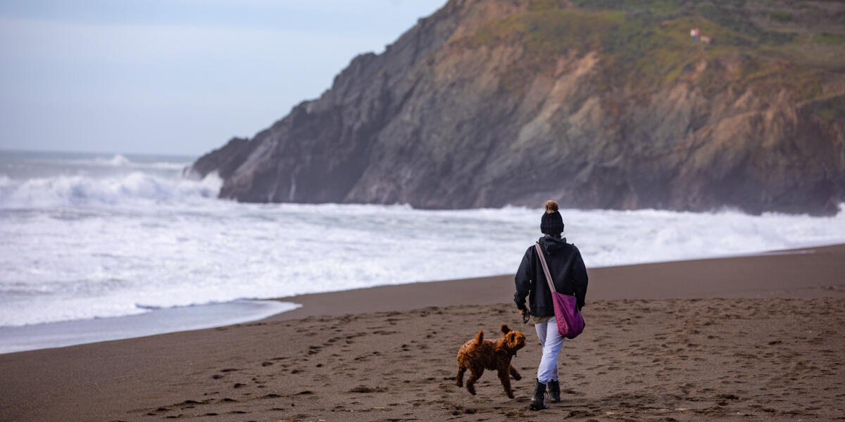 A park visitor walks their dog before the breaking surf at Rodeo Beach.