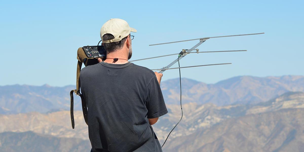 Tracking a hawk