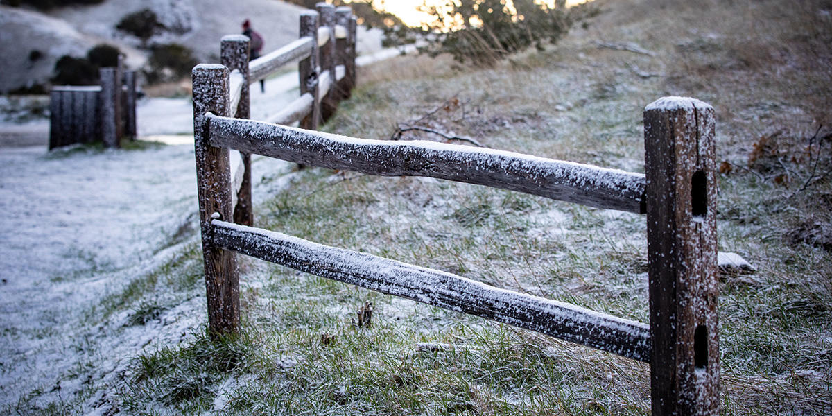 snow on rails