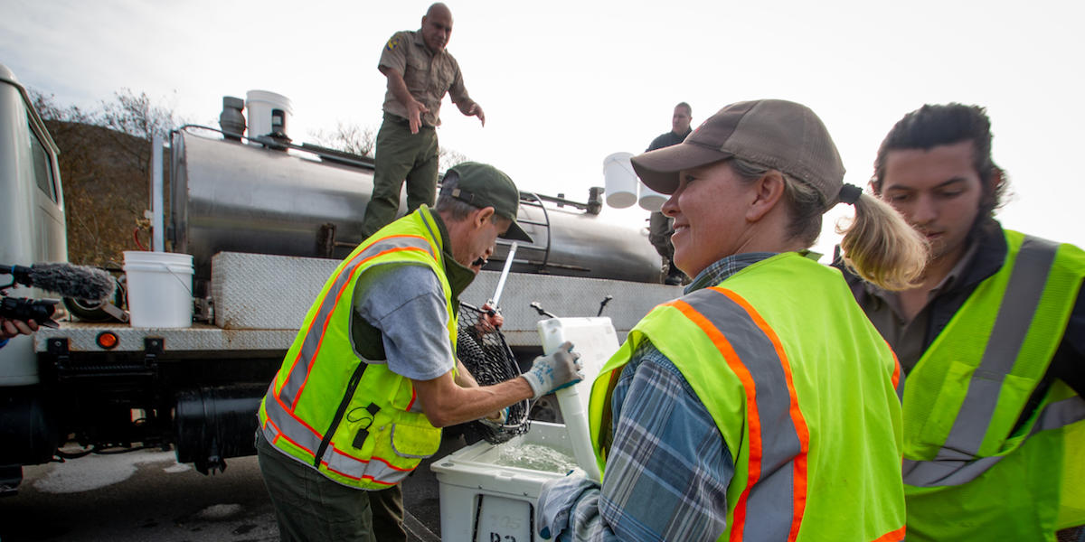 Research looks left as other scientist writes notes after receiving coho salmon.