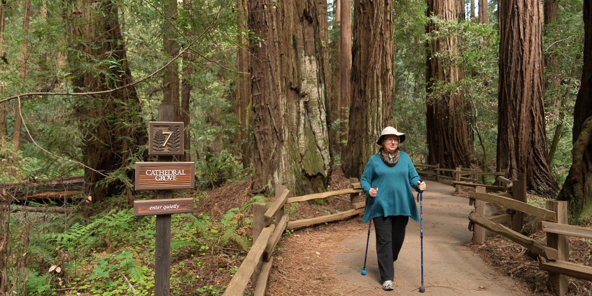 Muir Woods hiker