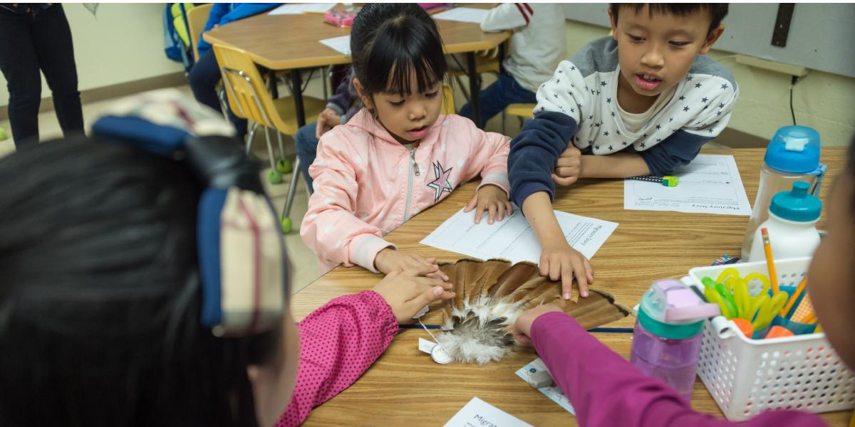Students get up-close and personal with hawk feathers