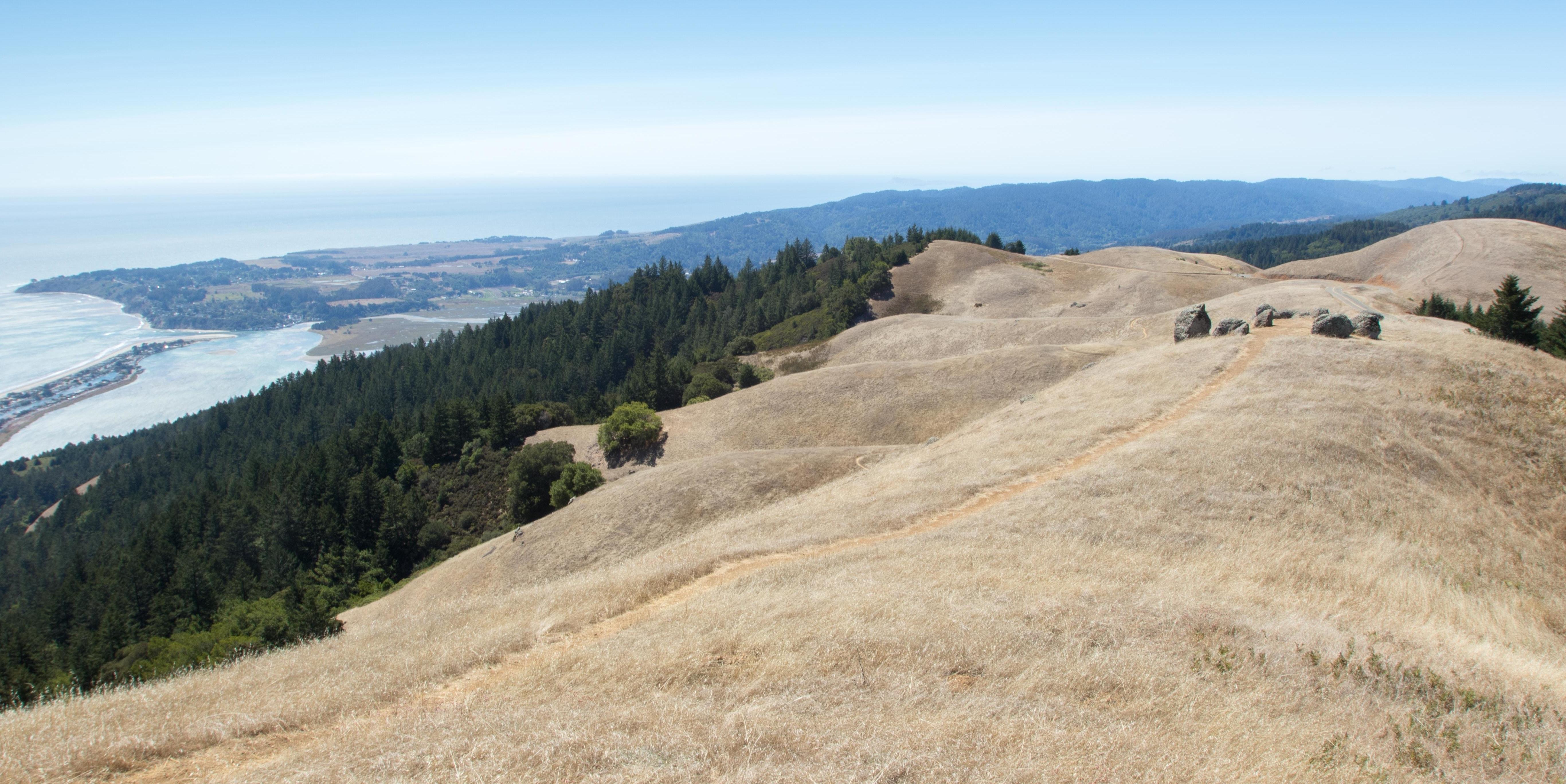 Trail atop Bolinas Ridge