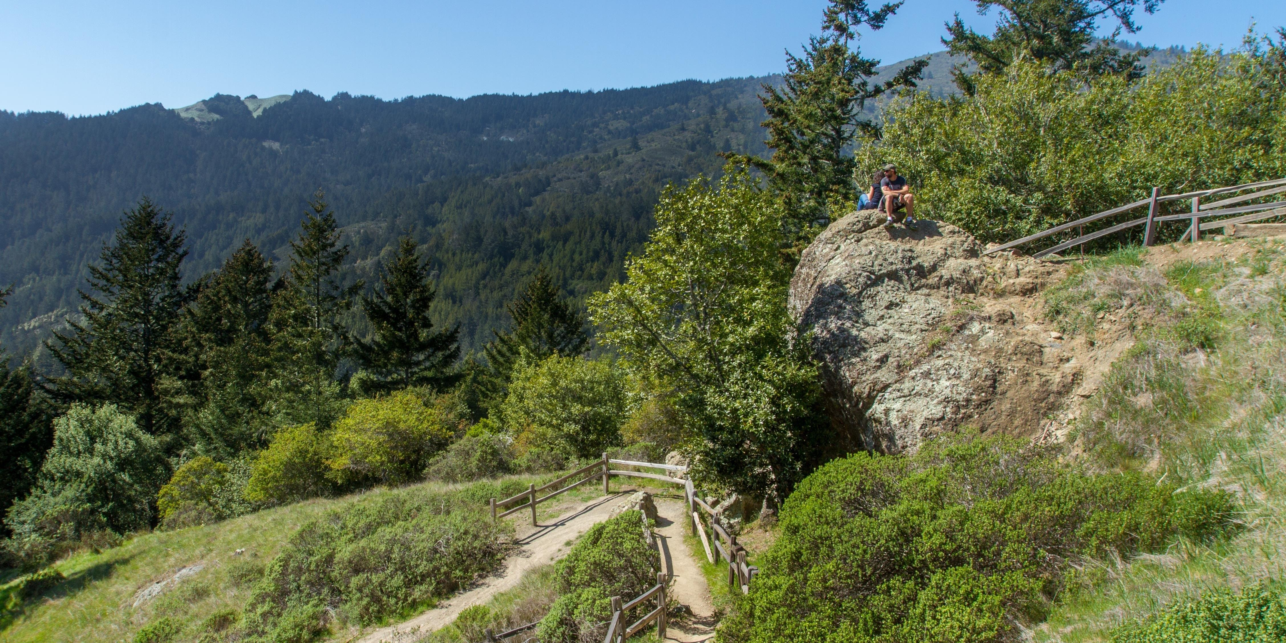 Panoramic Trail meets the Canopy View Trail at this rock
