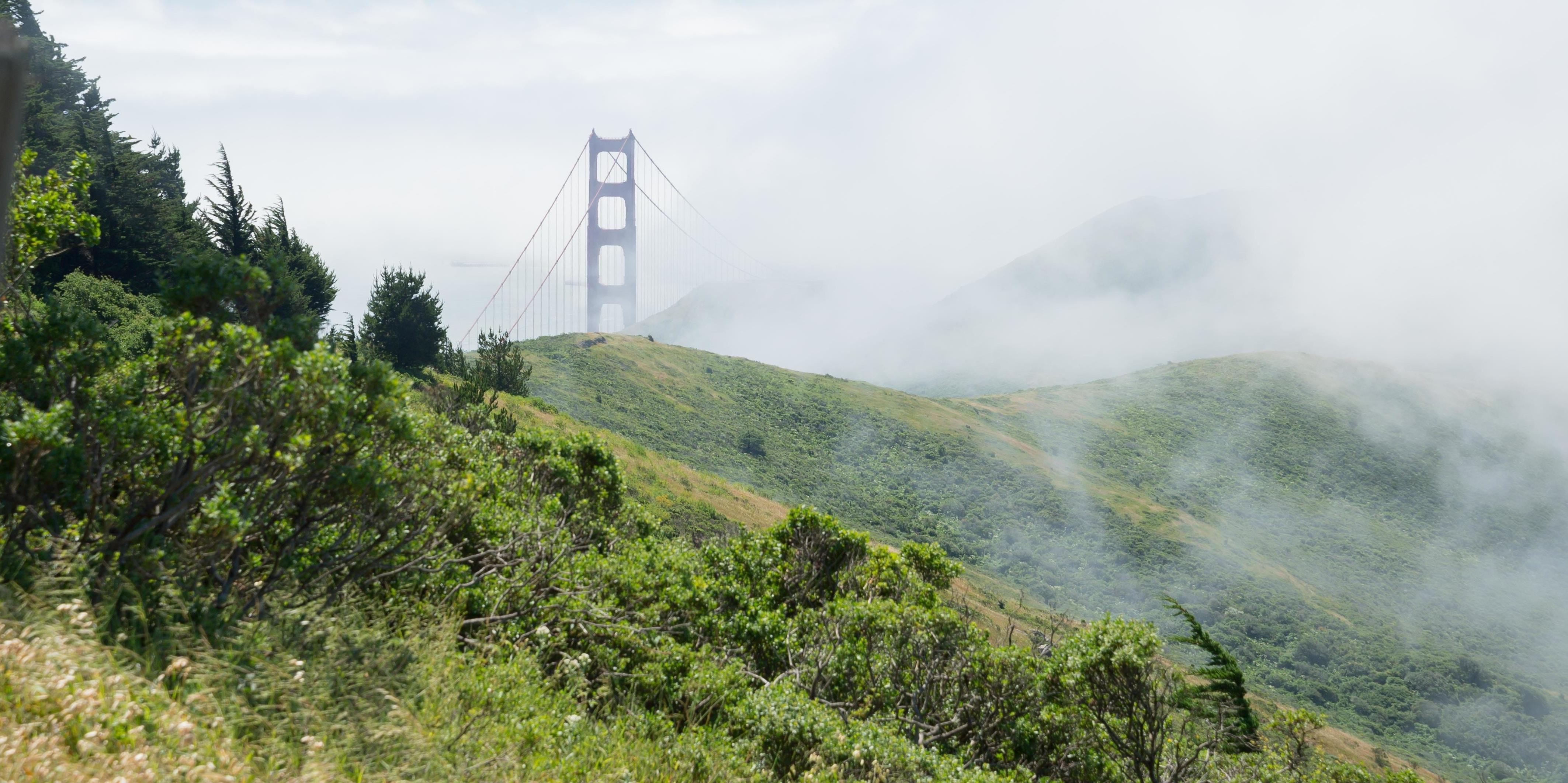 Low clouds cloak the Marin Headlands