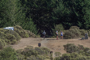 Dipsea Trail (Mount Tamalpais)