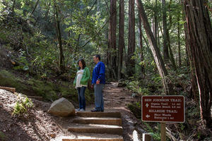 Ben Johnson Trail, Muir Woods