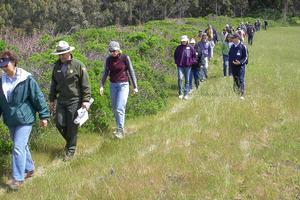 Clipper Ridge Trail, Rancho Corral De Tierra