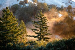 A light dusting of snow on Mt. Tamalpais