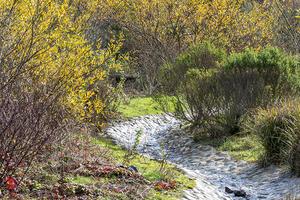El Polín Spring