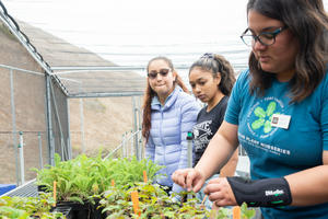 Students check on plants at the Oceana High School Nursery