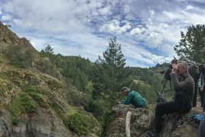 Carson Falls, Mt. Tam