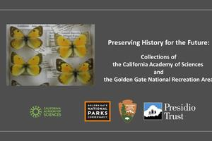 Preserving History for the Future Logo