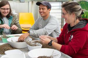Presidio Nursery volunteers work with seeds