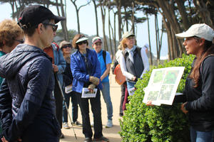 What's the Flower walk with San Francisco Stewardship team