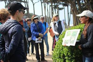 What's the Flower walk with San Francisco Stewardship team