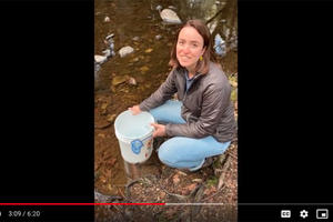 A teacher connected with her students via video for their trout release.