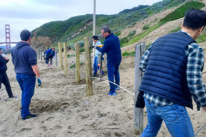 A group of volunteers replacing post and cable fencing at Baker Beach.