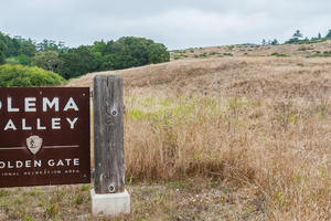 Welcome to Olema Valley