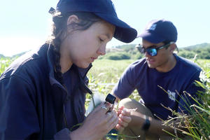 One Tam staff count vegetation near lake.