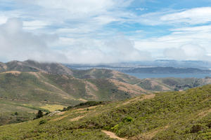 The Parks Conservancy has supported numerous projects in the Marin Headlands over its 40-year history.