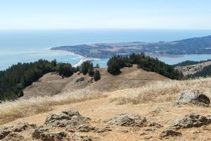 Views toward Bolinas from Willow Camp Fire Road