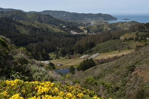 View toward the ocean from Sweeney Ridge