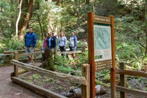 Fern Creek Trail