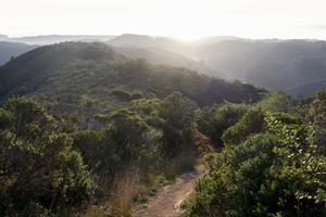 Path winding through Rancho Corral de Tierra